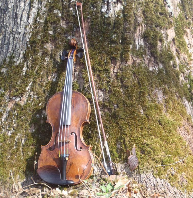 Jean Marc Vignoli, violoniste outdoor