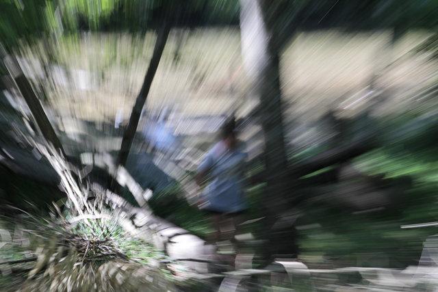 L'Arbre à Fil - Parcours Pieds Nus